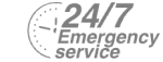 24/7 Emergency Service Pest Control in West Byfleet, Byfleet, KT14. Call Now! 020 8166 9746