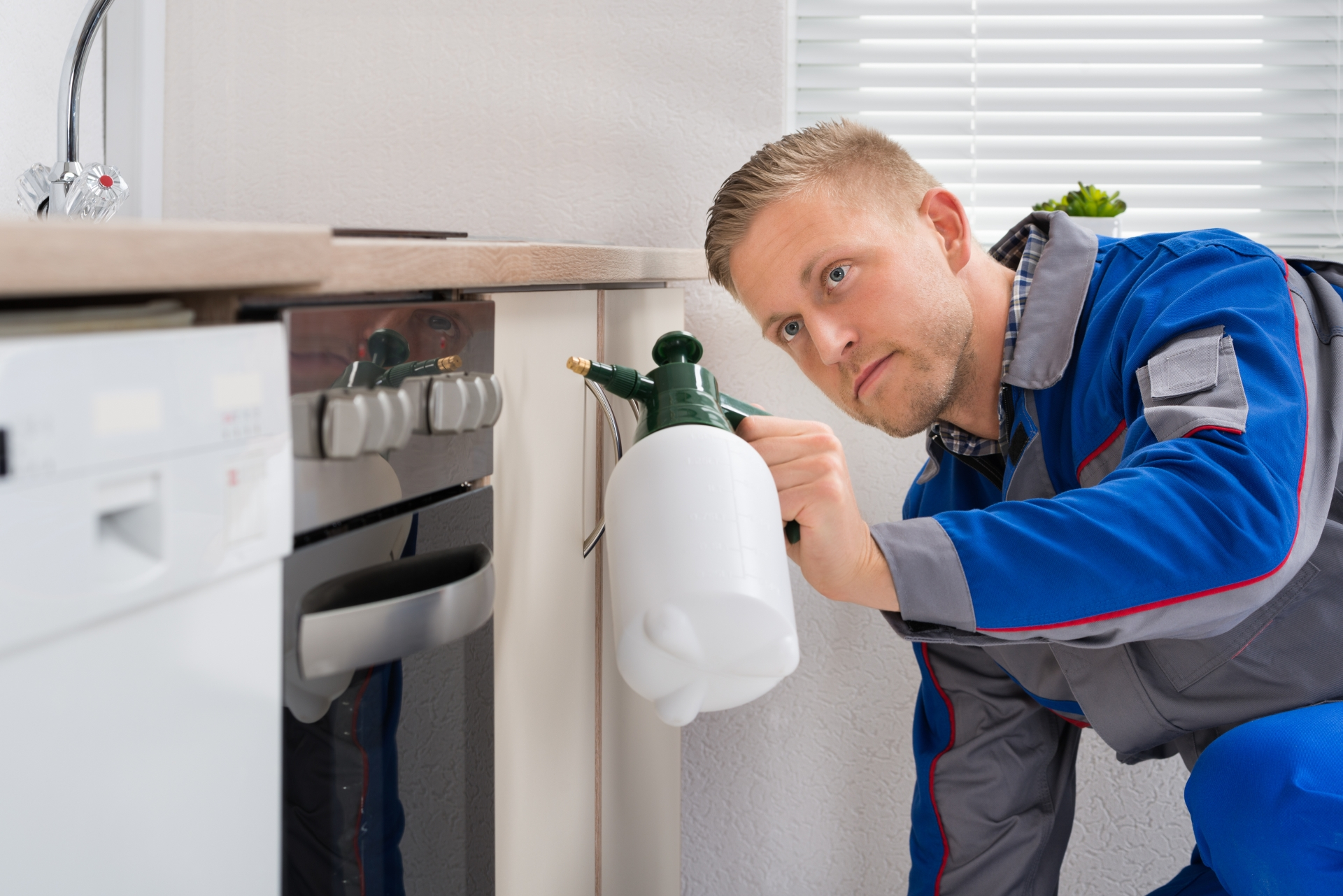 Pest Inspection, Pest Control in West Byfleet, Byfleet, KT14. Call Now 020 8166 9746